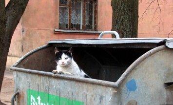 Neizpildot ES prasības atkritumu apsaimniekošanā, Latvijai minimālā soda nauda būs 392 000 eiro