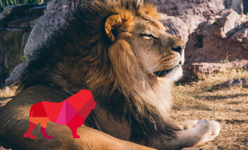 Tipisks Lauva. Ko no viņa var sagaidīt?