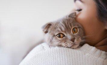Obamu noslepkavot alkstošu sievieti iegāzis viņas kaķis