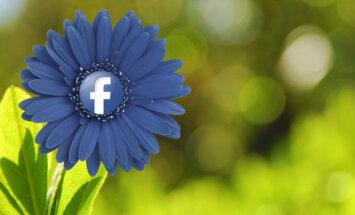 Facebook решил создавать собственный видеоконтент