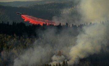 Savvaļas ugunsgrēku dūmi ASV rietumdaļas iedzīvotājiem radījuši nopietnas veselības likstas