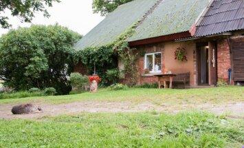Lauku māja ar daudzkrāsainu vēsturi – stāsts par kādreizējās skolas atdzimšanu Vecaucē