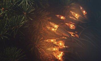 Kā notīrīt noputējušās gaismiņu virtenes un mākslīgos egļu zarus