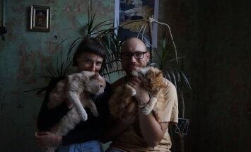 Kaķi, kuriem viss atļauts, – aristokrātiskais Čempions un Nikolajs, kas iet pie siksniņas