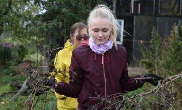 Labo darbu nedēļas pirmajās dienās palīdzēts skolotājiem, pensionāriem un meža zvēriem