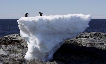 ООН: ущерб от глобального потепления превысит $2 трлн. в год