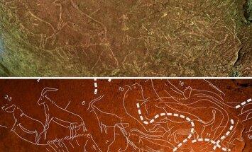 Basku Zemē atrasti visā Ibērijas pussalā iespaidīgākie alu gravējumi