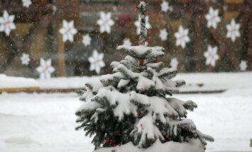 Pētījums: balti Ziemassvētki Latvijā būs retāk; lietusgāzes kļūs intensīvākas