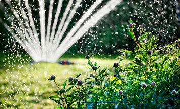 Zemgalē pirmdien gaiss varētu iesilt līdz plus 27 grādiem
