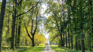 20 интересных латвийских парков для прогулок на выходных