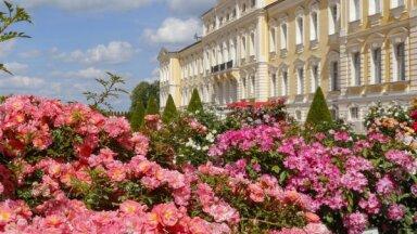 Jūlija sākumā notiks vēsturisko parku un dārzu dienas Latvijas pilīs un muižās