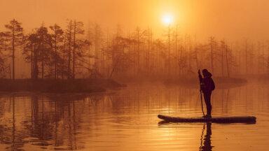 Putni saullēktā nav nekas skaists. Postošā atpūta dabā