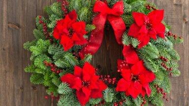 Как украсить дом к Рождеству и Новому году? Новогодние венки