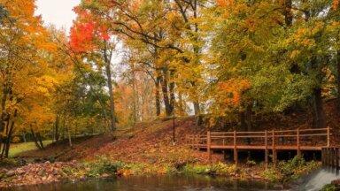 Kur doties baudīt rudenī: idejas skaistai laika pavadīšanai
