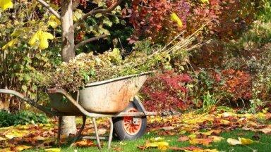 Pieci iemesli, lai rudenī neuzkoptu dārzu