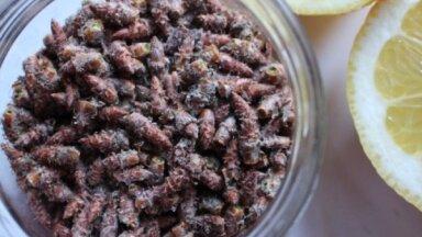 Sezonas produkts – priežu pumpuri: kā ievākt un izmantot veselīga sīrupa pagatavošanai
