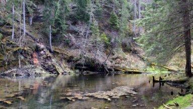 Gleznainās Cīrulīšu dabas takas ar alām, avotu un klintīm kā no bilžu grāmatas