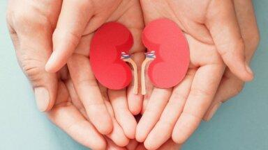 Презумпция несогласия. Как в Латвии работает система трансплантации органов