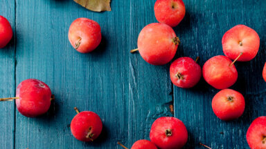 Tautas padomi: kā glabāt ābolus, lai tie vēl ziemā būtu sulīgi un gardi?