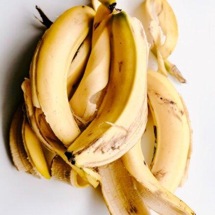 Перед открытием магазинов Lidl латвийские торговцы развязали банановую ценовую войну