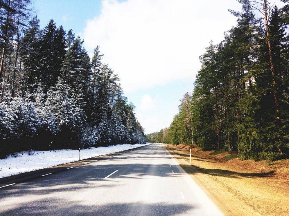 Уникальное ФОТО: в Эстонии погода предложила выбор между зимой и весной
