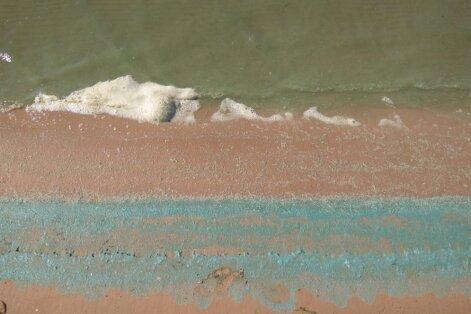 Самая большая концентрация сине-зеленых водорослей— в центральной части Балтийского моря