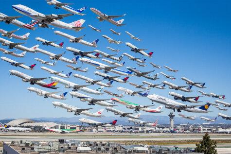 Табор уходит в небо. 10 стай диких самолетов в крупнейших аэропортах мира