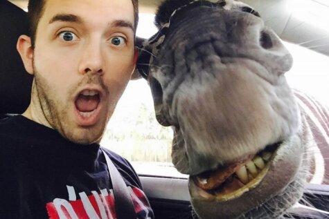 Vācu tūrists uzņēmis selfiju kopā ar zebru un antilopi