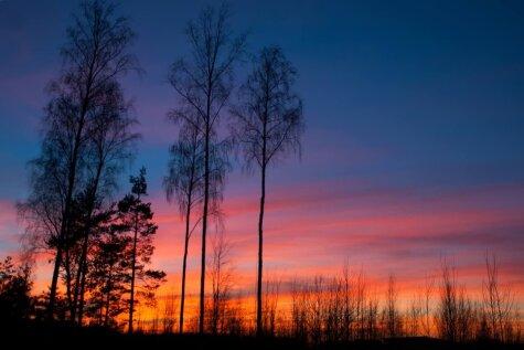Это - фотография заката в Латвии! Есть такие же или лучше? Присылай!