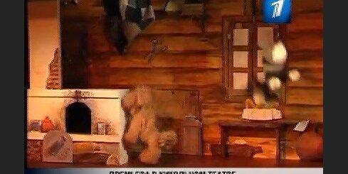 «Чудо-репка» в кукольном театре