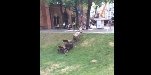 Zirgs rikšo pa Vecrīgas ielām