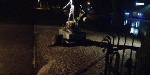 Bebrs noliec galvu pie Puškina pieminekļa