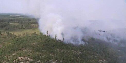Zviedrijā plosās liels mežu ugunsgrēks