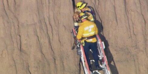 ASV izglābj klints spraugā iesprūdušu suni