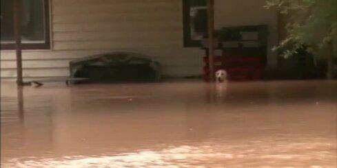 ASV glābēji pēdējā brīdī izglābj slīkstošu suni
