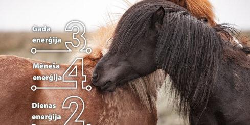 25. janvāra numeroloģiskais dienas fons