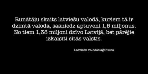 Profesors: latviešu valoda nespēj konkurēt brīvajā tirgū