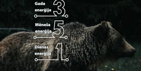 23. februāra numeroloģiskais dienas fons