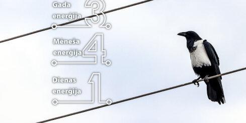 24. janvāra numeroloģiskais dienas fons