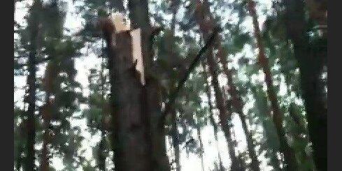 Vētra Vecāķos