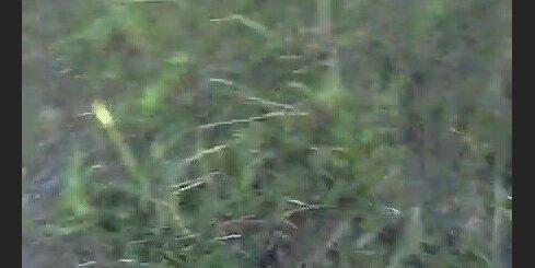Avārija Daugavpilī - 2