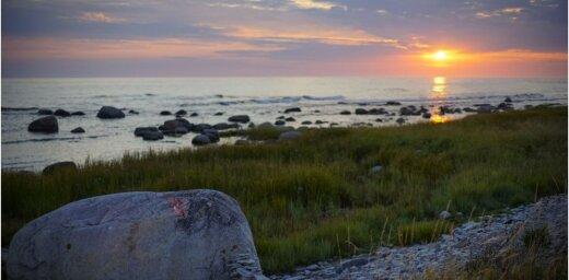 Foto: Aculiecinieku priecē krāšņā dabas bagātība Gotlandes salā