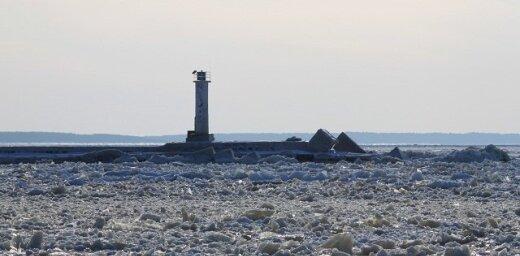 Daugavas grīva ledus važās