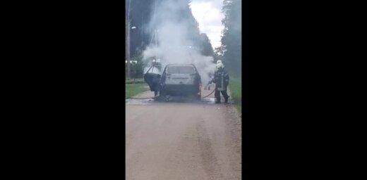Video: Ozolniekos sadeg automašīna
