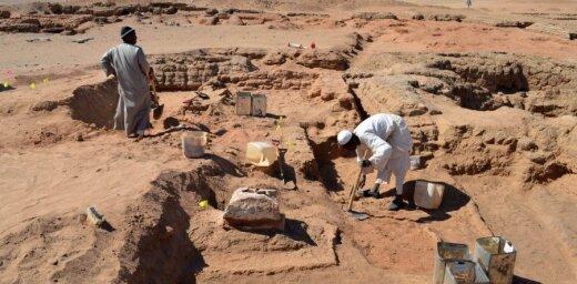 Опровергнуто существование древнейшей формы жизни