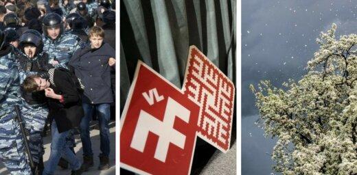 27 марта. Протесты в России, креатив Нацблока по госязыку, прогноз синоптиков и фенолога