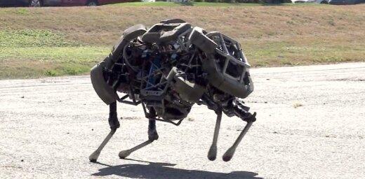 Četrkājainais robots iemācījies skriet galopā