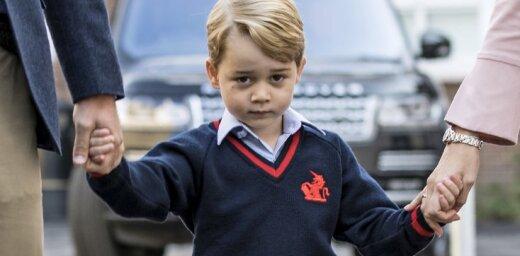 Atklāta mazā prinča Džordža mīļākā multene