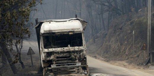 Жители португальской деревни спаслись от крупного пожара в баке с водой