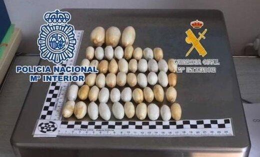 """Испания: """"живой контейнер"""" из Латвии провез в себе 102 пакета с кокаином"""